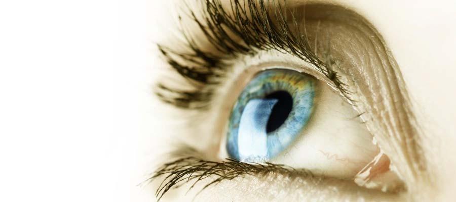 Pupil Definition Eye in Miami FL_